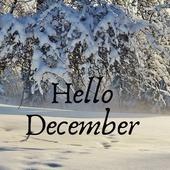 Make it a December to remember 🌲 Καλό μήνα σε όλους!!! #decembertoremember #staysafe #pelinaaccessories